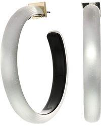 Alexis Bittar - Large Hoop Earrings (black Forest) Earring - Lyst