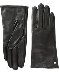 Lauren by Ralph Lauren - Cashmere Lined Touch Gloves - Lyst