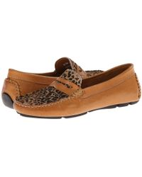 Massimo Matteo - Penny With Cheeta Vamp (tan Bison/cheeta) Women's Moccasin Shoes - Lyst