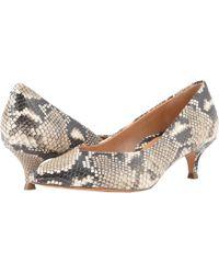 Vionic - Josie (light Grey) Women's 1-2 Inch Heel Shoes - Lyst