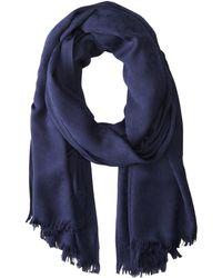 Calvin Klein - Ck Logo 2 In 1 Pashmina Wrap Scarf (adrenaline Blue) Scarves - Lyst