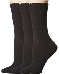 Hue - Scalloped Pointelle Socks 3-pack (black Solids) Women's Crew Cut Socks Shoes - Lyst