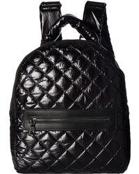 Sol And Selene - All Star (black) Bags - Lyst