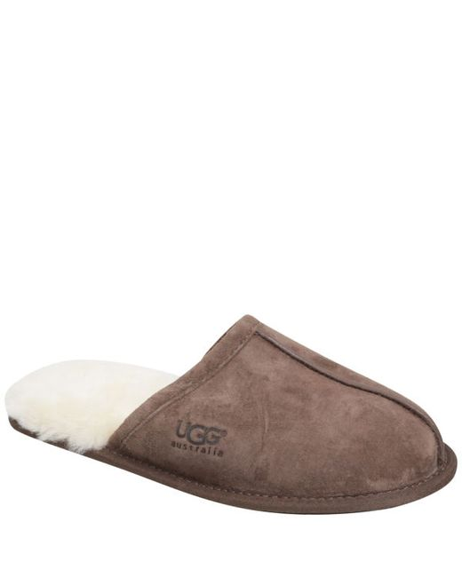 Ugg Scuff Sheepskin Mule Suede Slippers In Brown For Men