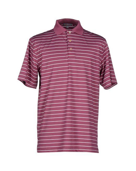 Peter millar polo shirt in purple for men garnet save for Peter millar polo shirts