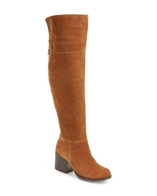 steve madden orabela knee high boots in brown chestnut