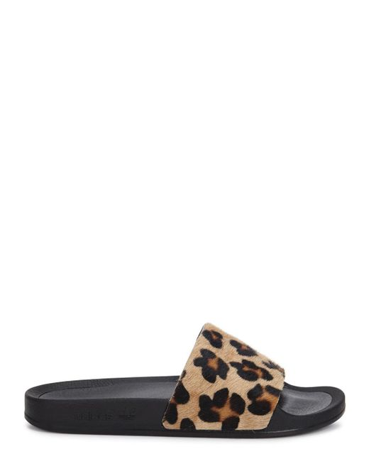 Adidas Leopard Shoes For Sale
