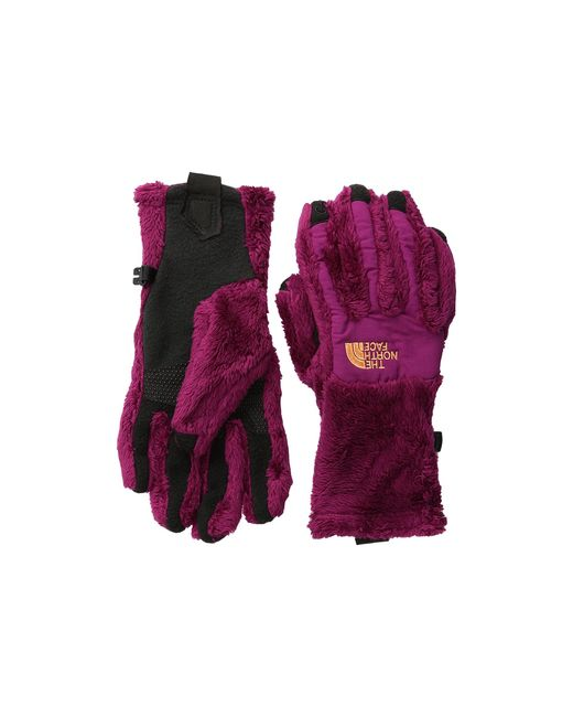 The North Face | Purple Denali Thermal Etip™ Glove | Lyst
