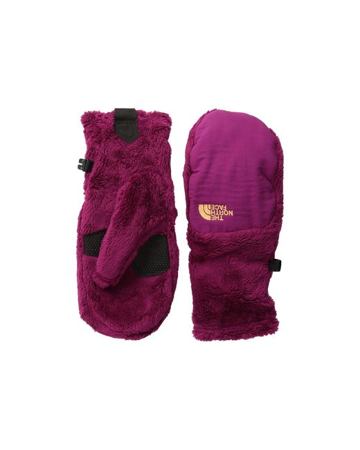The North Face | Purple Denali Thermal Mitt | Lyst