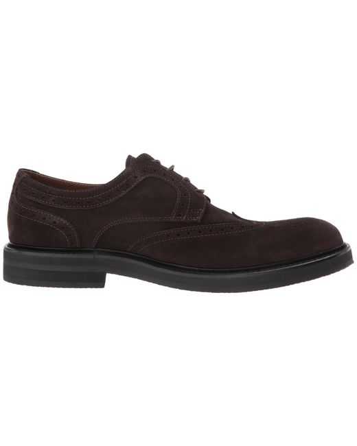 Suede Wingtip Lace-Up eleventy FtsKOAW