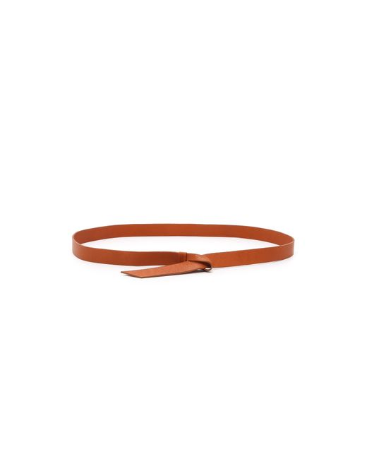 B-Low The Belt | Brown Loop Belt | Lyst