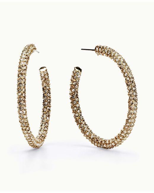 Ann Taylor | Metallic Micro Pave Hoop Earrings | Lyst