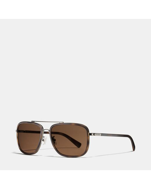 COACH | Brown Elliot Navigator Sunglasses for Men | Lyst