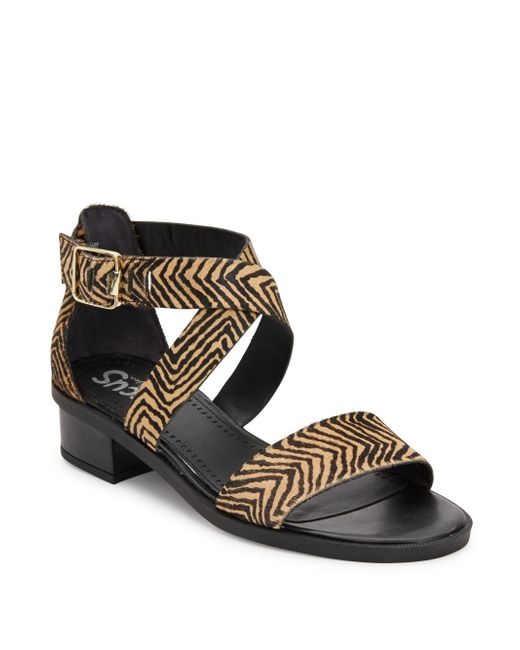 Sam Edelman Snakeskin Shoes Womens