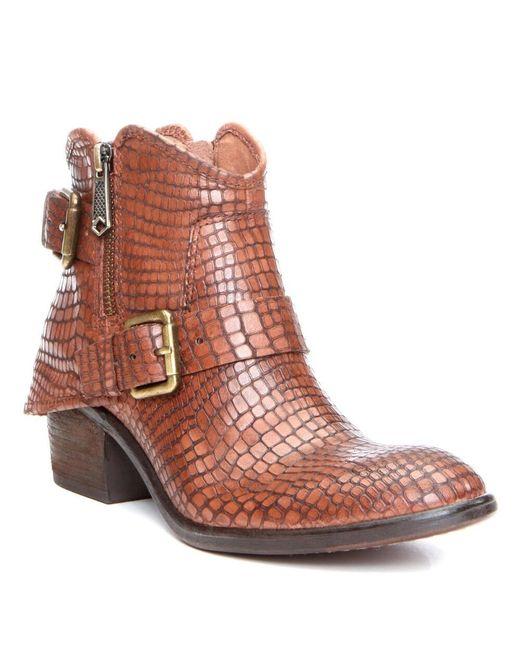 Donald J Pliner | Brown Donald J Pliner Dalis Leather Bootie | Lyst