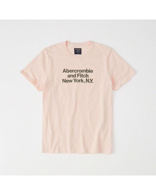 Abercrombie & Fitch - Multicolor Logo Tee for Men - Lyst