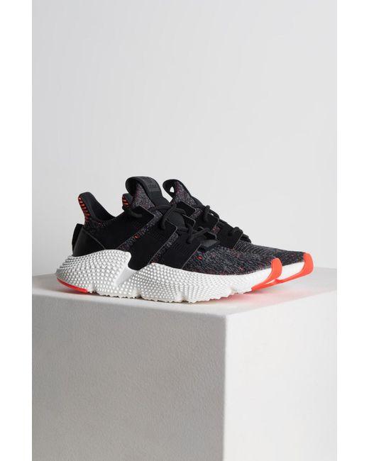 lyst adidas originals prophere sneakers in schwarz
