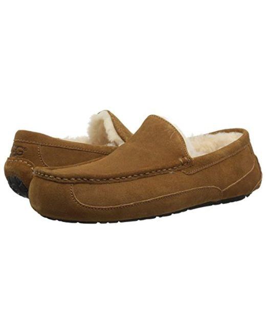 9d21c06e478f Lyst - UGG Ascot Slipper in Brown for Men - Save 9%