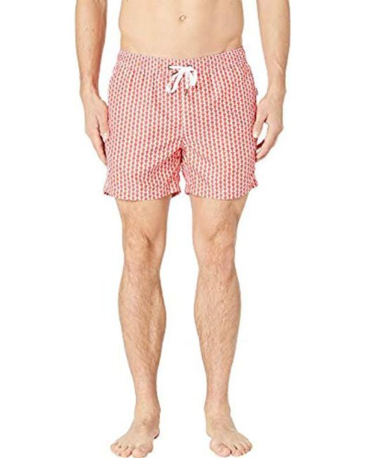 ca7741fdd894e Onia - Multicolor Charles 5 Inch Solid Swim Trunk for Men - Lyst ...