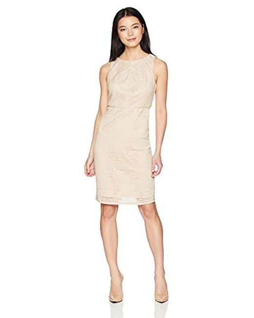 Adrianna Papell - Natural Petite Vintage Stripe Lace Sheath Dress - Lyst