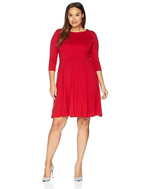 Lark & Ro Plus Size Three Quarter Sleeve Knit Fit And Flare Dress in ...