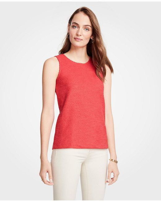 Ann Taylor - Multicolor Scalloped Textured Knit Shell - Lyst