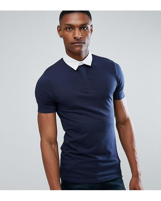 Lyst asos tall muscle rugby polo shirt in navy in blue for Big and tall polo rugby shirts