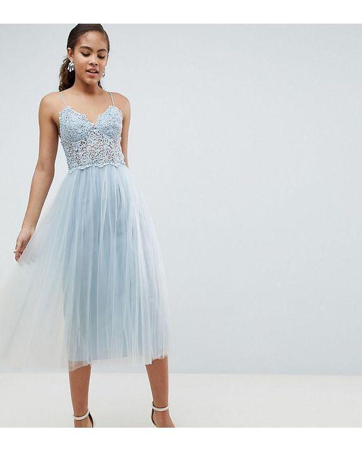 ASOS - Blue Asos Design Tall Premium Lace Cami Top Tulle Midi Dress - Lyst