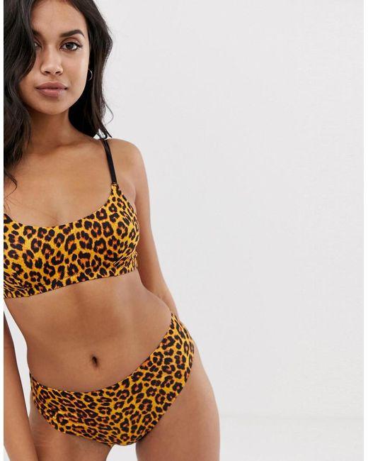 hot sale online e31eb 01534 Women's Brown Animal Print Microfibre Bralette In Natural Leopard