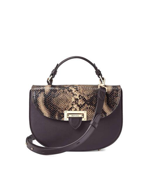 Aspinal   Brown Letterbox Saddle Bag   Lyst