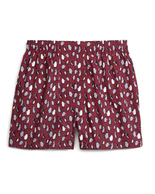Brooks brothers Traditional Fit Penguin Print Boxers in ...