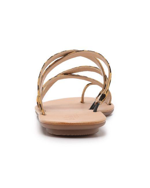 Loeffler Randall | Multicolor Sarie Sandals | Lyst