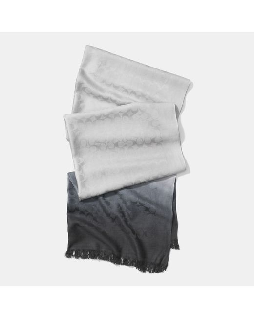 COACH | Black Signature C Ombre Stole | Lyst