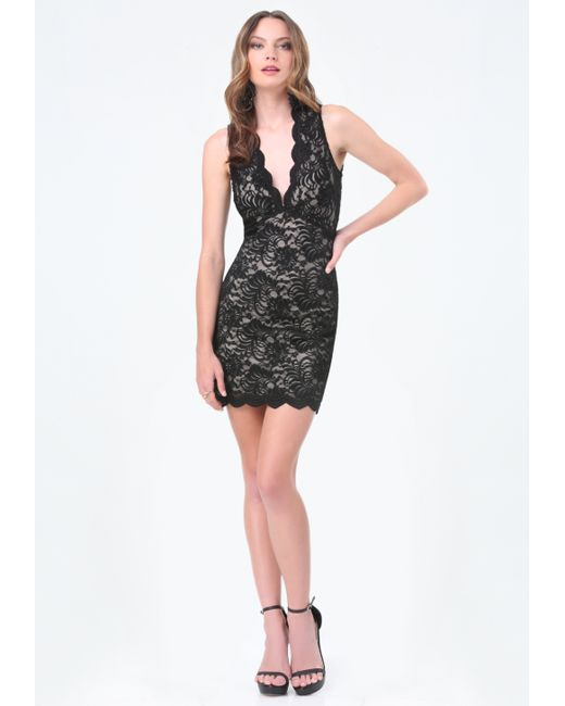 Bebe scallop lace plunge dress in black black tan lyst for Bebe dresses wedding guest