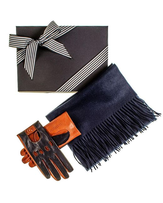 Black.co.uk - Blue Navy And Tobacco Driving Gloves And Navy Cashmere Scarf Gift Set for Men - Lyst