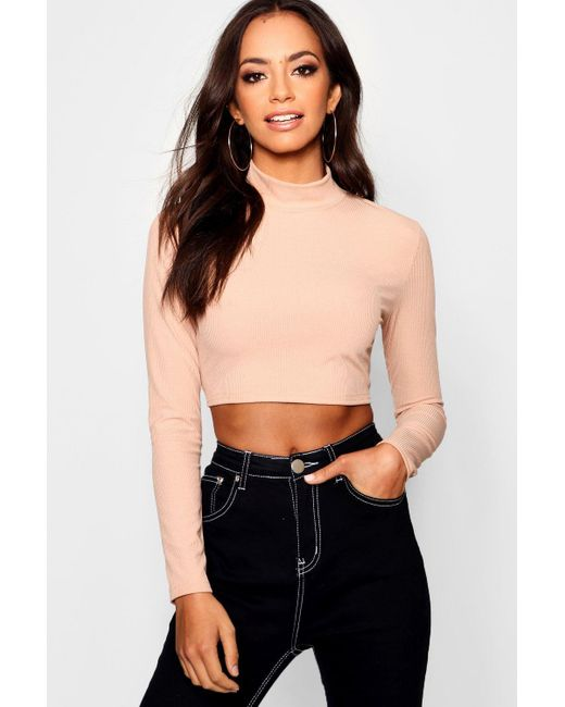 5b054901f9e2d3 Boohoo - Multicolor Basic Cropped High Neck Ribbed Top - Lyst ...