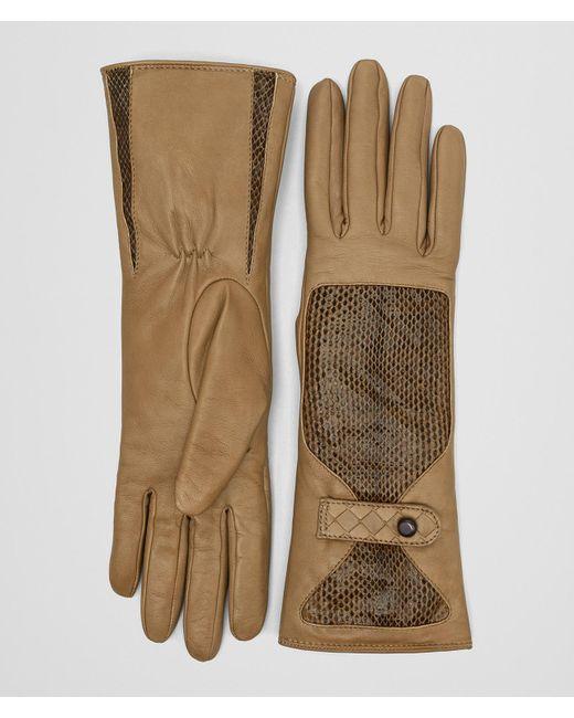 Bottega Veneta - Natural Camel Lamb Ayers Glove - Lyst