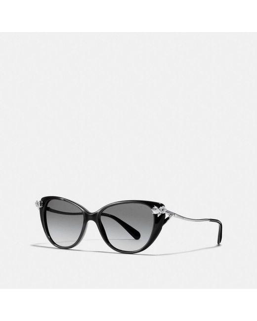 76397717c8 ... germany coach black tea rose sunglasses lyst 0a954 3218c