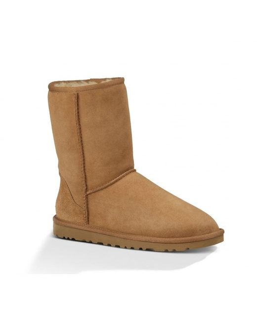 Ugg   Brown Classic Short Ladies Boot   Lyst