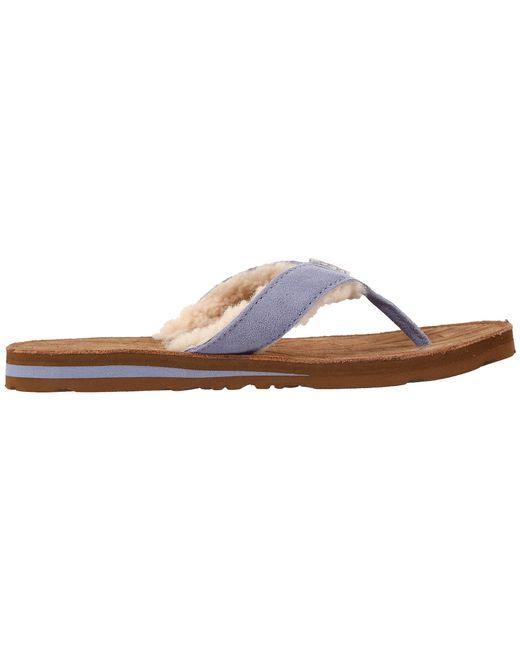 267a79e4b81 Where Can I Buy Ugg Tasmina Flip Flops | MIT Hillel