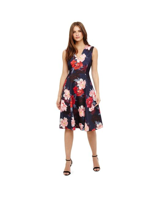 Phase Eight - Blue Elba Floral Fit And Flare Dress - Lyst