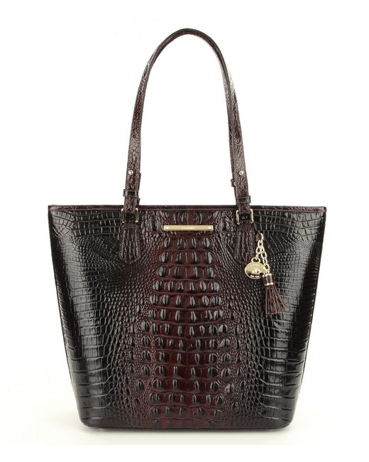 Brahmin | Brown Melbourne Collection Asher Tote | Lyst