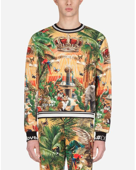 18d29b42 Dolce & Gabbana - Multicolor Cotton Sweatshirt With Tropical King Print for  Men - Lyst ...