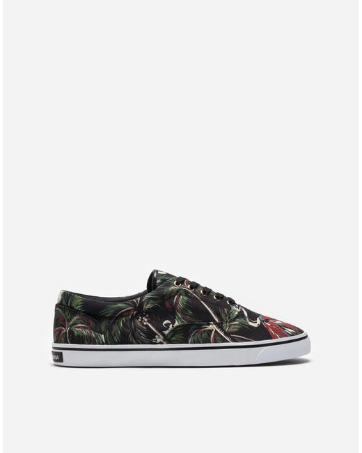 Dolce & Gabbana | Black Sneakers In Printed Canvas | Lyst