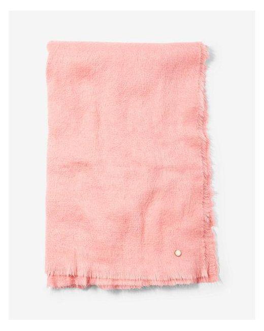 Express - Pink Brushed Blanket Scarf - Lyst