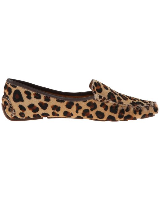 Patricia Green | Multicolor 'jillian' Loafer | Lyst