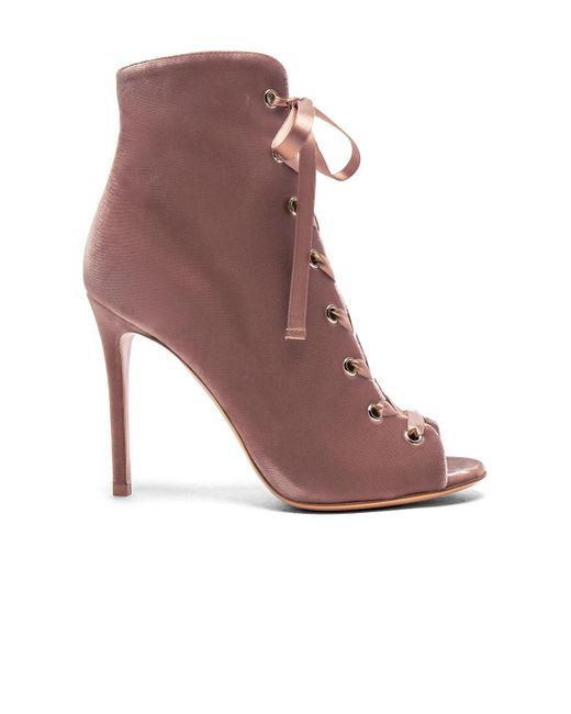 Gianvito Rossi - Brown For Fwrd Exclusive Velvet Lace Up Booties - Lyst