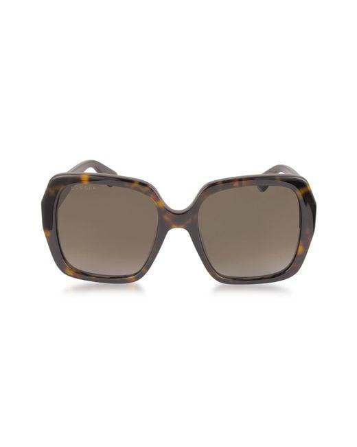 Gucci - Brown GG0096S 006 Havana Acetate Square Women's Polarized Sunglasses - Lyst