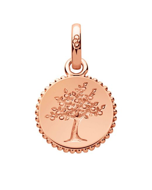 Links of London - Pink Amulet Tree Of Life Charm - Lyst