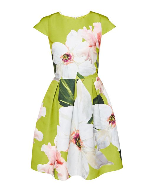 Ted Baker - Green Chatsworth Bloom Skater Dress - Lyst